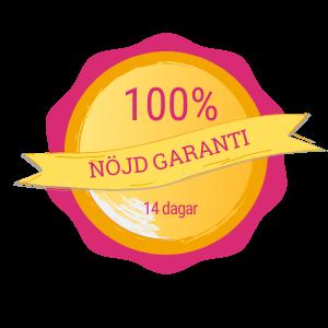 Garanti - 300